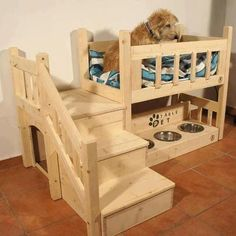 Great pet area for dog or cats.