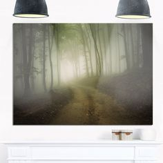 Dark Fall Forest Road in Morning - Landscape Photo Glossy Metal Wall Art