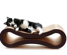 Reclaim your furniture by giving your cat the PetFusion Ultimate Cat Scratcher Lounge . This corrugated cardboard piece doubles as a cat scratcher and. Pet Shop, Ugly Cat, Cat Activity, What Cat, Cat Scratcher, Cat Condo, Cat Furniture, Pet Beds, Small Dogs