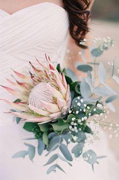 protea eucalyptus and babys breath wedding bouquet Flor Protea, Protea Bouquet, Protea Wedding, Floral Wedding, Wedding Bouquets, Flower Bouquets, Baby's Breath Wedding Bouquet, Bridesmaid Bouquets, Exotic Flowers