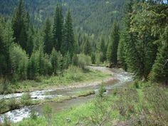 Colorado River | Colorado River)