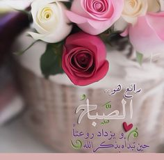 Beautiful Morning, Good Morning, Grim Reaper, Islamic Calligraphy, 3d Character, Morning Quotes, Rose, Morning Glories, Flowers