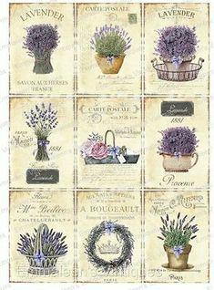 Details about Vintage Image Shabby Labels Lavender Flowers Grunge Waterslide Decals - obraz - Vintage Labels, Vintage Ephemera, Vintage Cards, Vintage Paper, Vintage Images, Shabby Vintage, Vintage Flowers, Shabby Chic, Vintage Floral