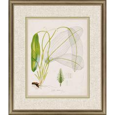 Paragon - Tropical Grass II