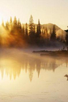 Morning Fog - Nikki Gold Photo Galleries - Mermaid-rebellion.com