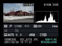 Qu'est-ce qu'un histogramme et comment l'utiliser ?   Nikon Passion