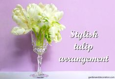 Get creative with flower arrangements by reusing your household items. Here´s a simple handmade tulip arrangement with a glass. White Tulips, Schnapps, Glass Garden, Some Ideas, Household Items, Flower Arrangements, Easy Diy, Stylish, Simple