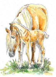 HAFLINGER MARE & Colt Horse Original Watercolor on by writedesign