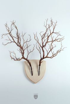 """Turn plants into vegan wall mounts with this cool design, inspired by the Japanese flower arrangement """"ikebana"""", created by Italian designer team. Ikebana (生け花), also referred to as """"living flowers"""","""