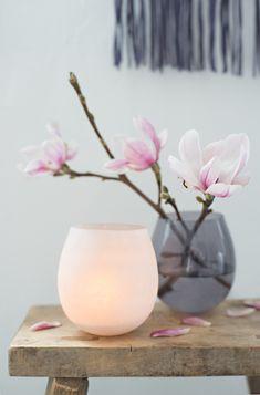 """mich hat in diesen """"spätwintertagen"""" (wie der radiomoderator meines vertrauens dieses ungemütliche wetter gerade so schön tituliert) noch ... Bonsai Plante, My Flower, Flowers, Plant Painting, Flower Aesthetic, Bouquet, Nordic Style, Ikebana, Indoor Plants"""