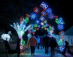 It's getting colder outside, and that means lots of holiday events are popping up in the metro Detroit area. Check out this list for the best family-friendly events to see in Detroit. Detroit Zoo, Detroit Area, Metro Detroit, Detroit Michigan, The Palace Of Auburn Hills, Zoo Lights, Family Friendly Holidays, Royal Oak, Circle Of Life