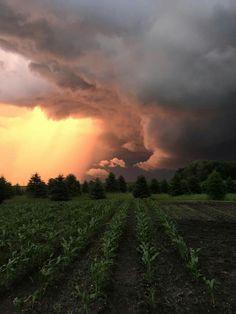 Summer storms ♡
