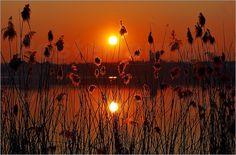 Poster Sonnenuntergang am See