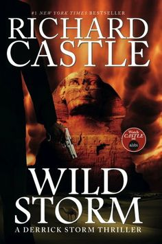 Wild Storm (a Derrick Storm Novel) (Castle) by Richard Castle - Derrick Storm is returning from a rock climbing vacation in the Swiss Alps, when the plane spirals into a nose-dive. Storm heroically saves the plane and all the people on board. Sadly, Storm isn't available to come to the aid of the three other planes that have crashed under similar circumstances, killing everyone on board. The always elusive Jedidiah Jones calls on Storm to investigate.