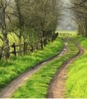 """""""Stop worrying about the potholes in the road and enjoy the journey.""""      ~Babs Hoffman"""