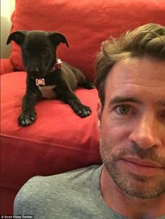 Scott Foley. And a puppy. What could be better??