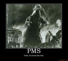 demotivational poster PMS