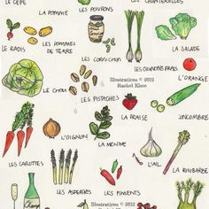 Paris for vegetarians - Rachel Khoo Rachel Khoo, French Class, French Lessons, Spanish Lessons, How To Speak French, Learn French, Vegetable Illustration, French Language Learning, German Language