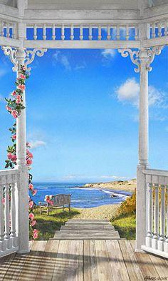 Alan Ayers - Carolina Isle