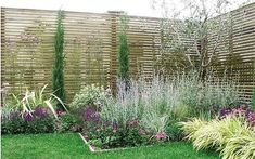 Divide and rule: best fencing and hedges - Telegraph