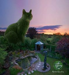 TOPIARY CAT  The Topiary Cat is a surrealist photographic montage series based on the cat, Tolly, of Richard Saunders.  www.facebook.com/topiarycat LikeCommentSha