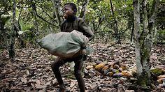OGEOGRAFO: O lado negro do chocolate: crianças escravizadas n...