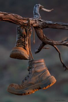 """splendiferoushoney: """" by charles millen """" Moda Formal, Old Shoes, Brown Aesthetic, Photo Editor, Aesthetic Pictures, Cowboy Boots, Inspiration, Beautiful, Style"""
