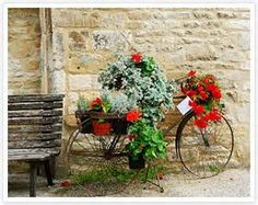 cotswolds images - Yahoo Image Search Results