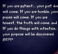 Wehbe's Words of Wisdom