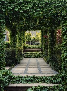 Trellised patio - beautiful