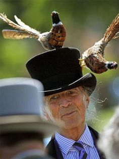 Case in point: Artist and milliner David Shilling wears a hat topped with pheasants at Royal Ascot, in Berkshire, west of London.