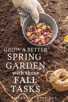Fall garden tasks for a better spring garden. Planting Bulbs In Spring, Spring Bulbs, Autumn Garden, Spring Garden, Garden Fun, Garden Ideas, Gardening For Beginners, Gardening Tips, Cold Climate Gardening