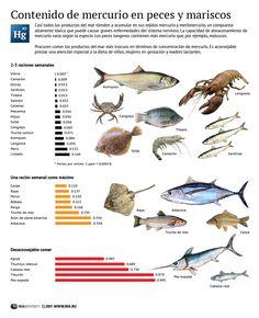 contenido de mercurio en pescado Using Chopsticks, Seafood Seasoning, Types Of Fish, Pescatarian Recipes, Seasonal Food, Sea Fish, American Food, Fish And Seafood, Kitchen Recipes