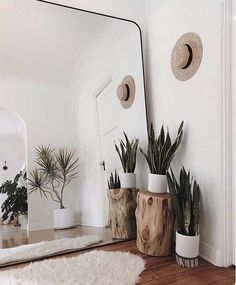 Make small spaces seem larger with a giant mirror. This idea will evolve any room into a beautiful clean space. Make small spaces seem larger with a giant mirror. This idea will evolve any room into a beautiful clean space. Plant Decor, Home Decor Inspiration, Room Inspiration, Decor, Bedroom Decor, Decor Inspiration, Apartment Decor, Tree Stump Side Table, Giant Mirror