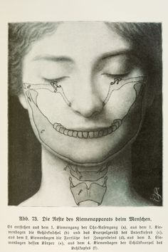 The Wonder in Us (1921) - Having Fun with your Modern Head: Anatomy in Modernity. Photo: Plate 19 in Wunder in Uns, 1921