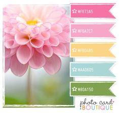 Love this pastel color scheme. Colour scheme ideas for felt flower bouquets by ohmyfelt