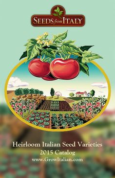 Seeds from Italy is the exclusive U.S. mail-order distributor for Franchi Seeds, Italy's oldest family-owned seed company, founded in 1783