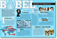Babel Explains Our Differences Wall Chart - Answers Vol. 3 No. 2  From: Answers in Gensis $1.99