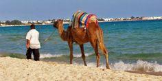 مدينة الحمامات التونسية.. باقة من المتعة    #Hamamat #Tunisia