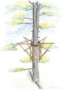 Build Easy Treehouse Plans DIY PDF buliding plans for a wood frame ...
