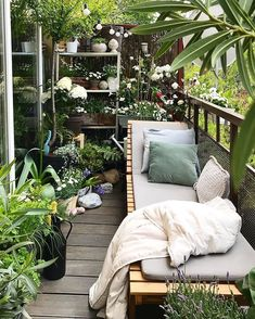 Une mini jungle sur un balcon. - Balcony Garden Ideas , Une mini jungle sur un balcon. Une mini jungle sur un balcon. Small Balcony Design, Small Balcony Garden, Small Balcony Decor, Balcony Plants, Small Patio, Balcony Gardening, Balcony Flowers, Small Balconies, Outdoor Balcony