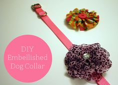 4 simple steps to a super chic diy dog collar!  {For Chic Sake}
