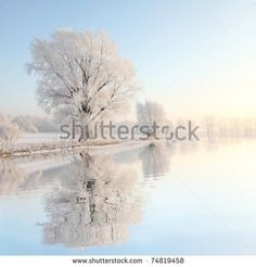 Arvores E Caminhos Fotos, imagens e fotografias Stock | Shutterstock