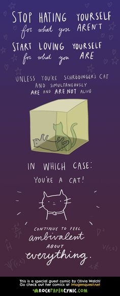 What Schrodinger's Cat says about being true to yourself (guest comic by Olivia Walch!)