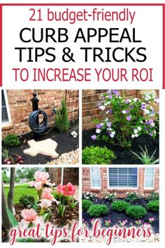 Here are step by step instructions on how to implement simple and cheap front yard landscaping ideas and how to find cheap landscaping plants. Learn how to simplify landscaping with free landscape design software and low maintenance garden ideas for beginners and where to find the right type of plants for your zone. Whether for outdoor living or to improve curb appeal, these garden ideas and best curb appeal hacks will ensure a beautiful outdoor space. Free Landscape Design, Landscape Design Software, Garden Design, Low Maintenance Yard, Low Maintenance Landscaping, Landscaping Plants, Front Yard Landscaping, Landscaping Ideas, Home Renovation