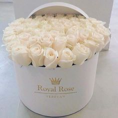white roses in a bucket