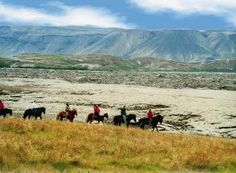 Horse Riding in Iceland - Lava Tour Riding the friendly Icelandic horses is something you have to experience at least once in your life. Ride through lava field! https://www.extremeiceland.is/en/activity-tours-iceland/horse-riding-iceland/day-tours/horse-riding-lava-tour