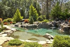 Cottage Landscape/Yard with Natural pool, Natural rock pool accent, Steps and risers, Inter-fab aspen waterfall