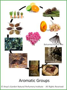 Perfume Aromatic Groups as Potpourri Concept - with a Recycle Twist!
