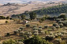 Craco area, province of Matera , basilicata region Italy